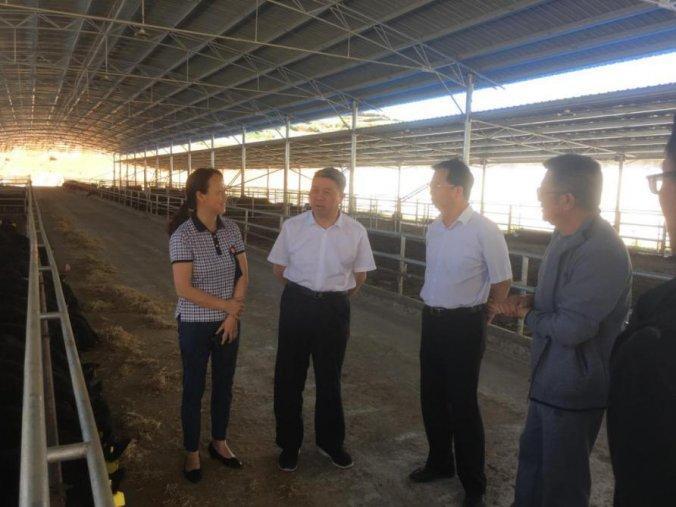 徐成高率队赴威宁县调研指导生态畜牧业和粮食生产工作